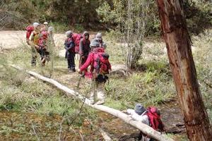 Aboriginal Boys Walk