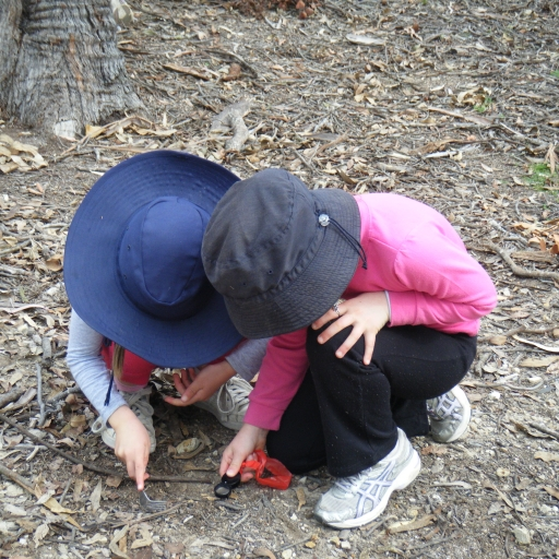 Stage 1 students looking with magnifying glass