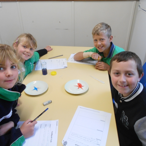 Students enjoy Science in the Lab
