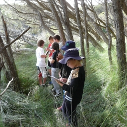 Students completing worksheets in Bournda National Park