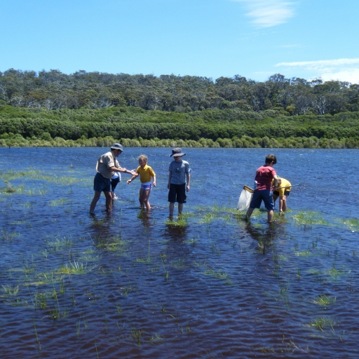 Marine Science Primary Program, Bondi Lake, Bournda National Park
