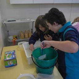 Creative & Talented Program Environmental Science