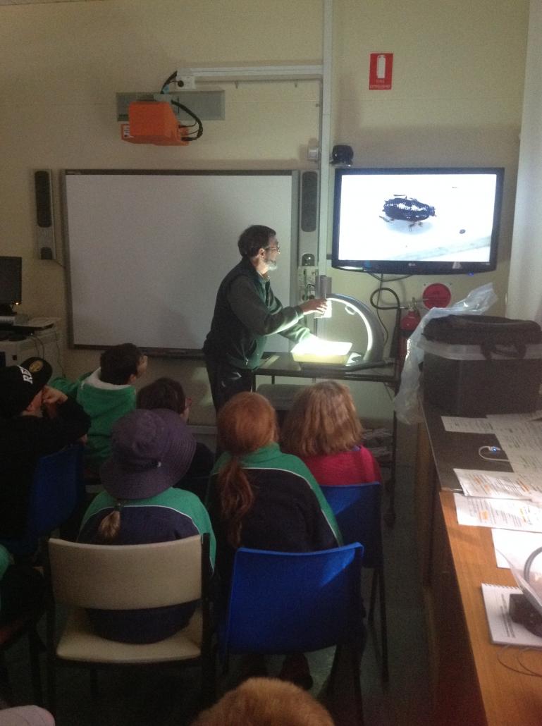 Using the microscope - C&T Biodiversity For Kids