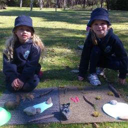 Students making habitats during the Living Things for Kindi program