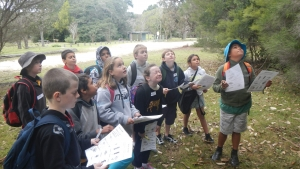 Stage 2 students participating in an Environmental Science program