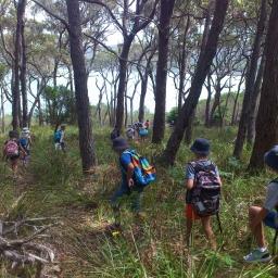 Stage 2 students exploring Bournda National Park