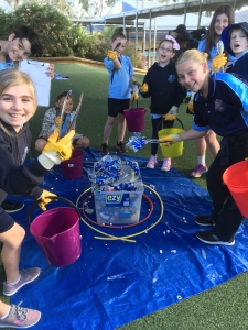 students from Pambula Public shool running a waste audit
