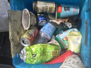 Roadside litter collected in a 60m2 area on Sapphire Coast Drive