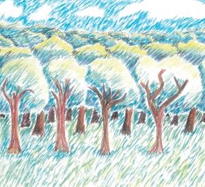 artwork of forest