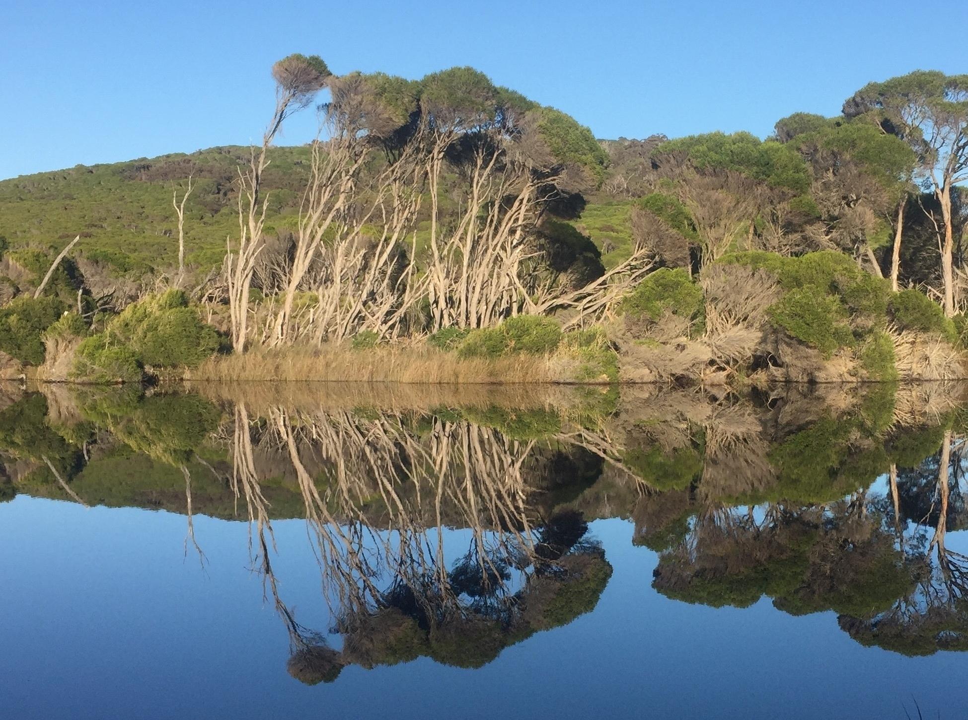 Bournda lagoon - reflection