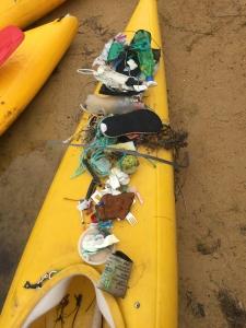 Litter from Bournda Lagoon