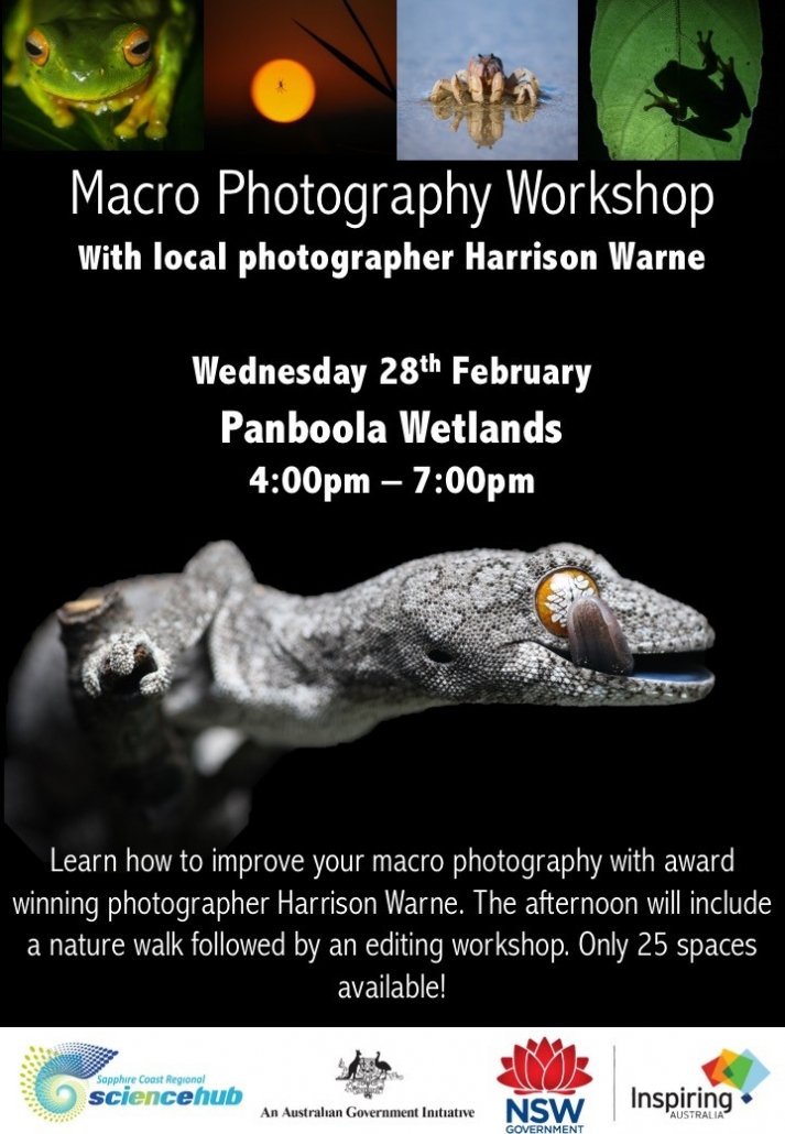 Flyer for photography workshop