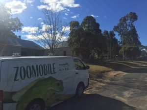Taronga Zoomobile outside Quaama Public School