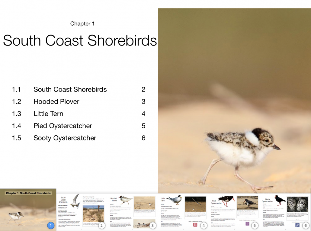 Screen shot of Saving our Shorebirds iBook