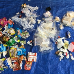waste items sorted by students