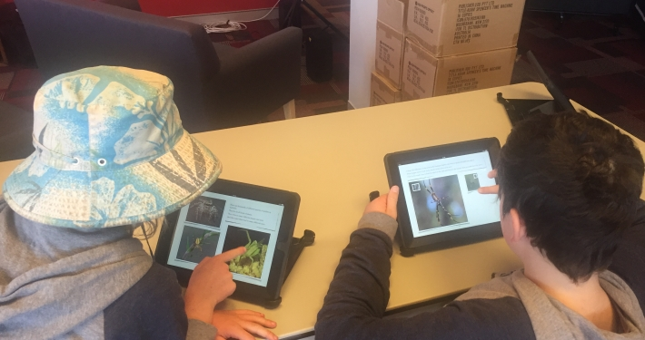 Bournda iPads in use with iBooks