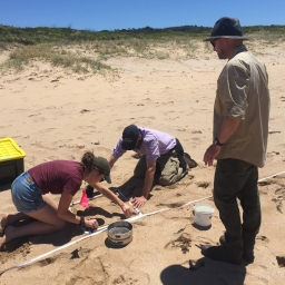AUSMAP microplastics survey on beach