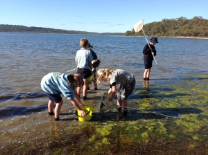 Students surveying biodiversity in Wallagoot Lake