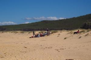 Sand dune study