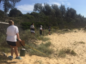 Students collecting data on the beach