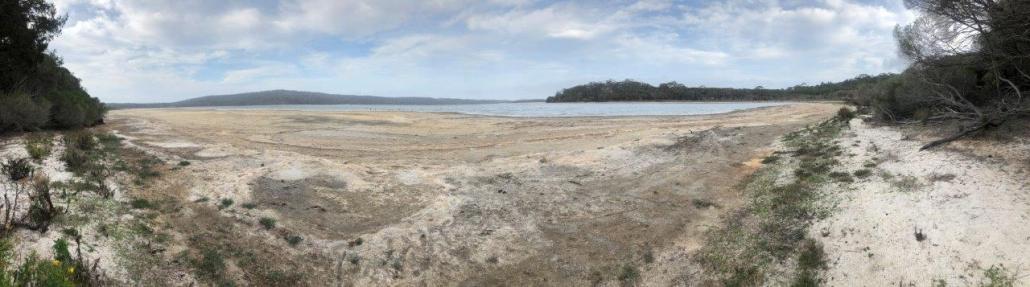 Wallagoot Lake shoreline January 2020
