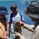 Students looking at seaweed