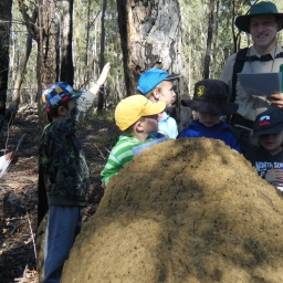 Students and termite mound