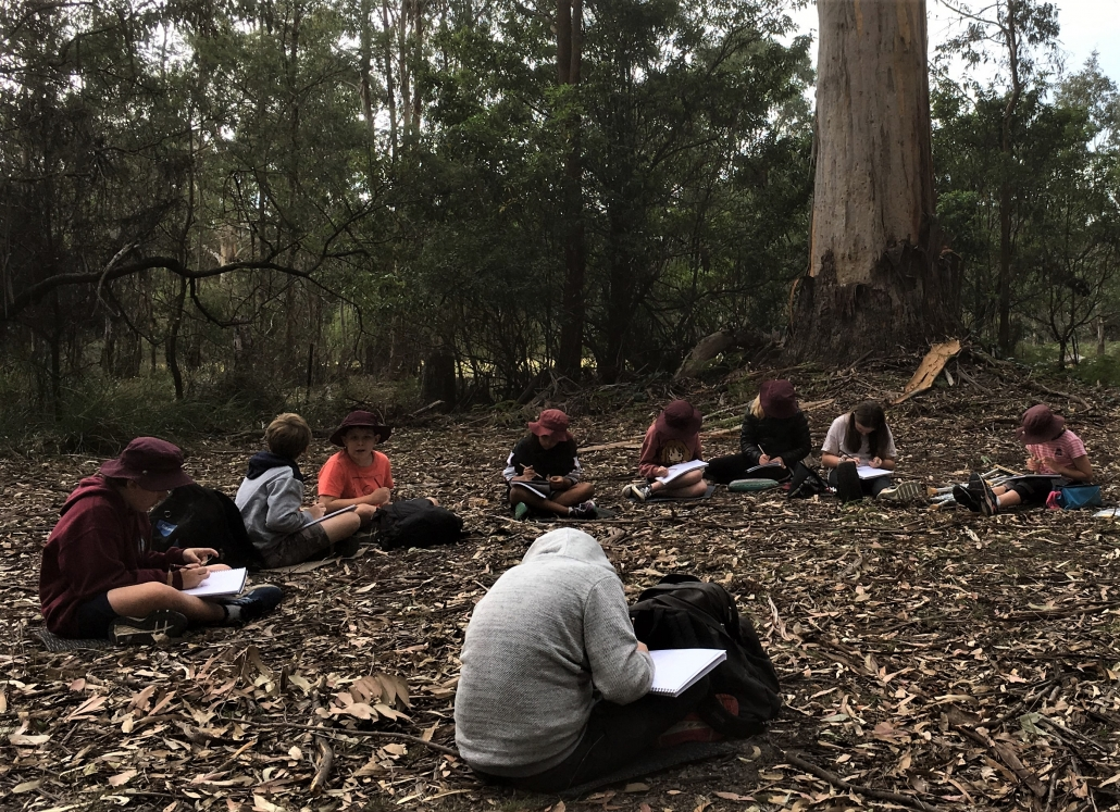 Stage 3 students working on their Nature Journals in the bush