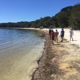 students walking around lake